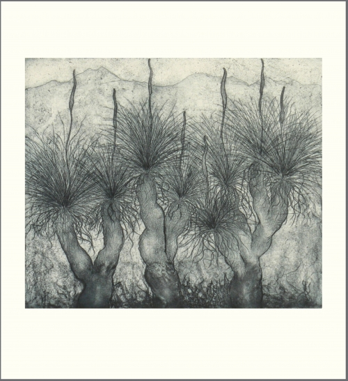 Discontinued Etchings